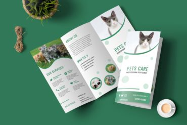 HOW TO DESIGN YOUR BROCHURE ? GUIDE 101